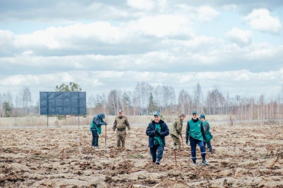 Жителі Ратнівщини висаджують саджанці