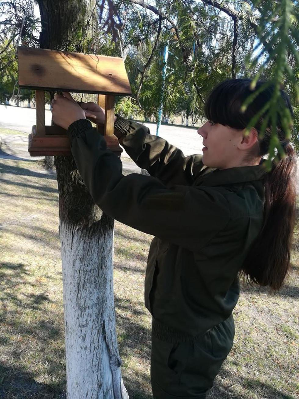 Школярка насипає корм для птахів у годівничку
