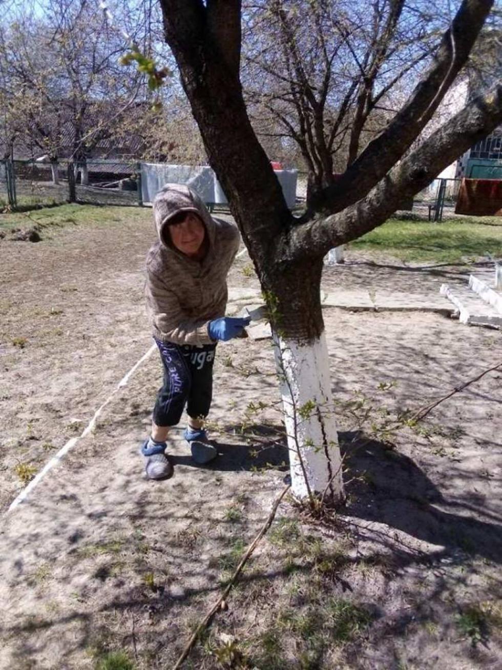 Ратнівчанка білить дерева