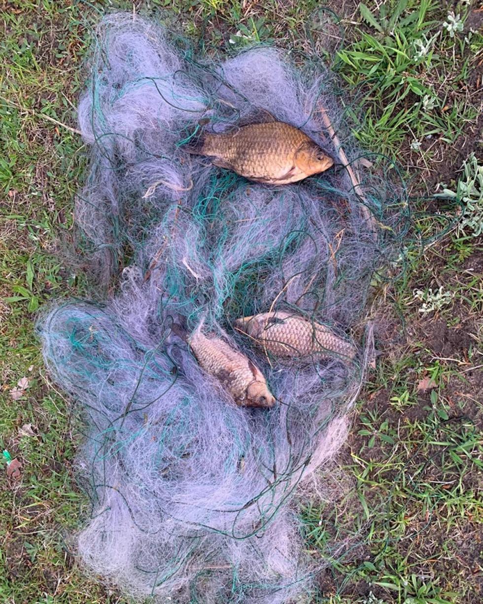 Знайдена сітка із рибою