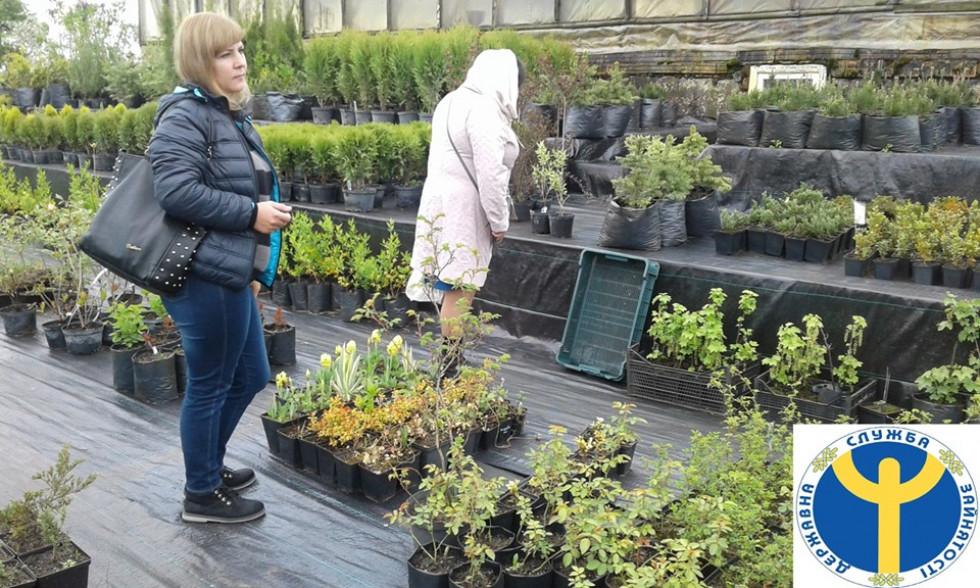 Гості Андрія Мартинюка оглядають саджанці квітів та кущів