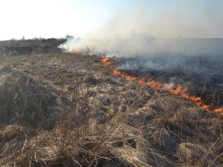 На Ратнівщині горіли чагарники та суха трава
