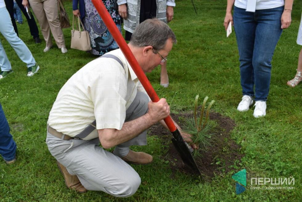 Михайло Бегаль висаджує дерево