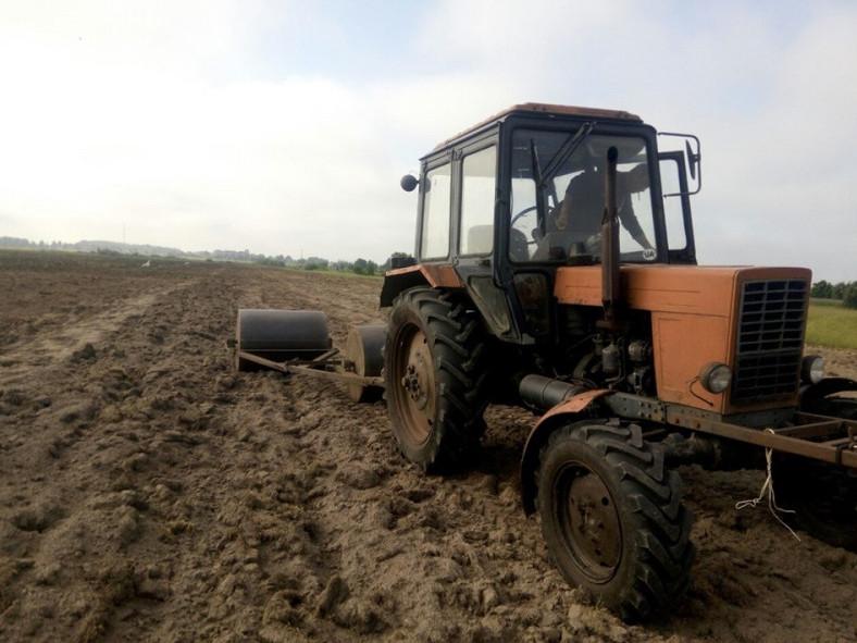 На території села Прохід заклали 10 гектарів громадських пасовищ
