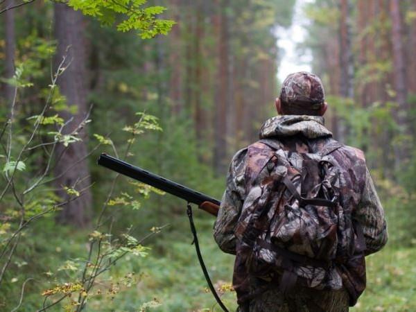 Мисливський сезон на Волині