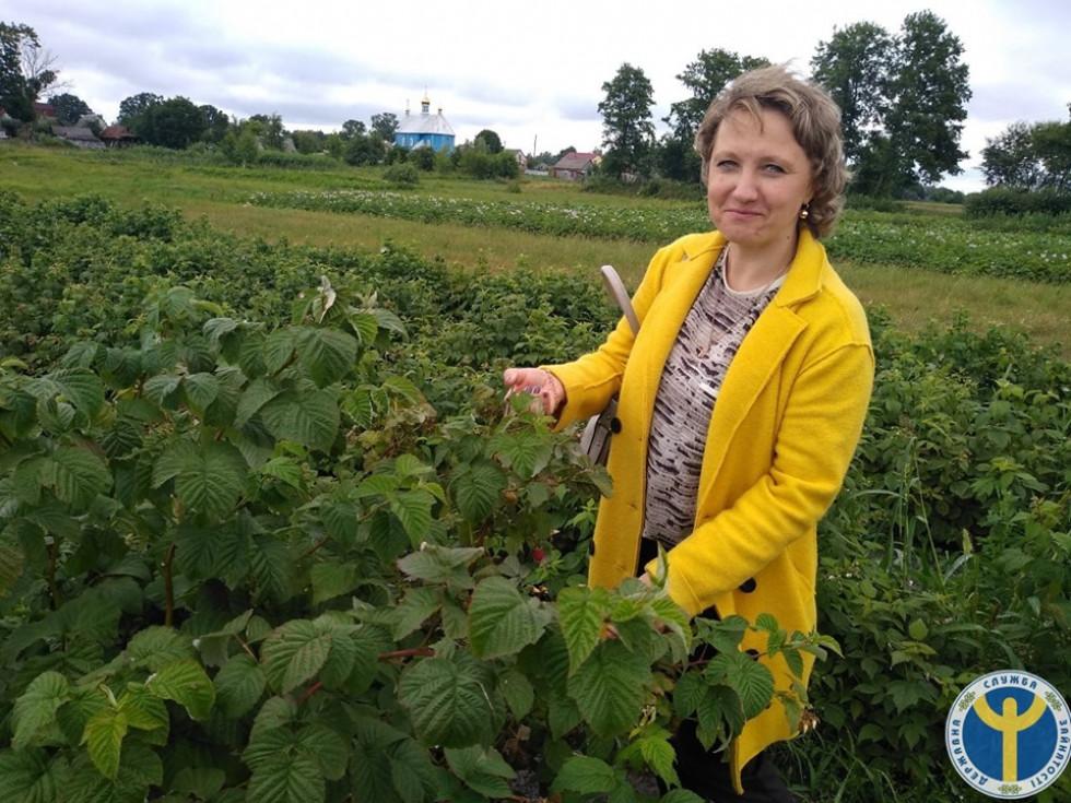 Волинянин розповів про європейські технології вирощування малини