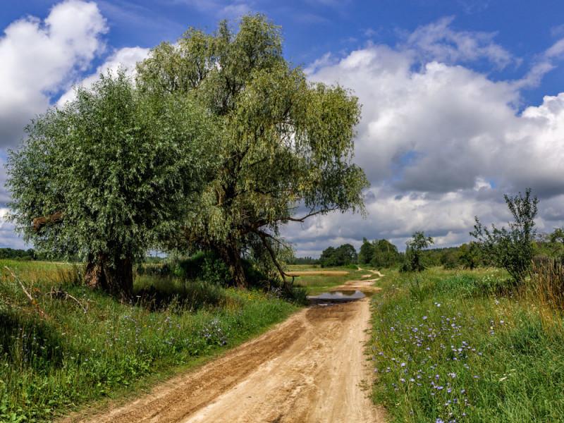 Прогноз погоди у Ратному на 21 липня