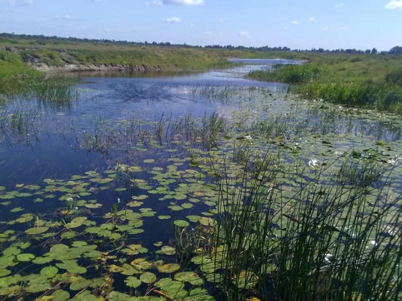 Обстежили річку Вижівку