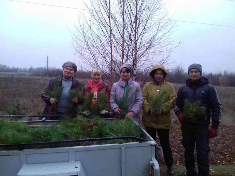 У Забродах висадили понад 500 дерев