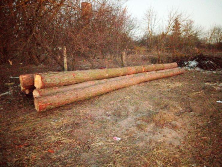 Вилучена лісопродукція