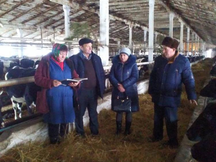 Керівники спілкуються із працівниками ферми