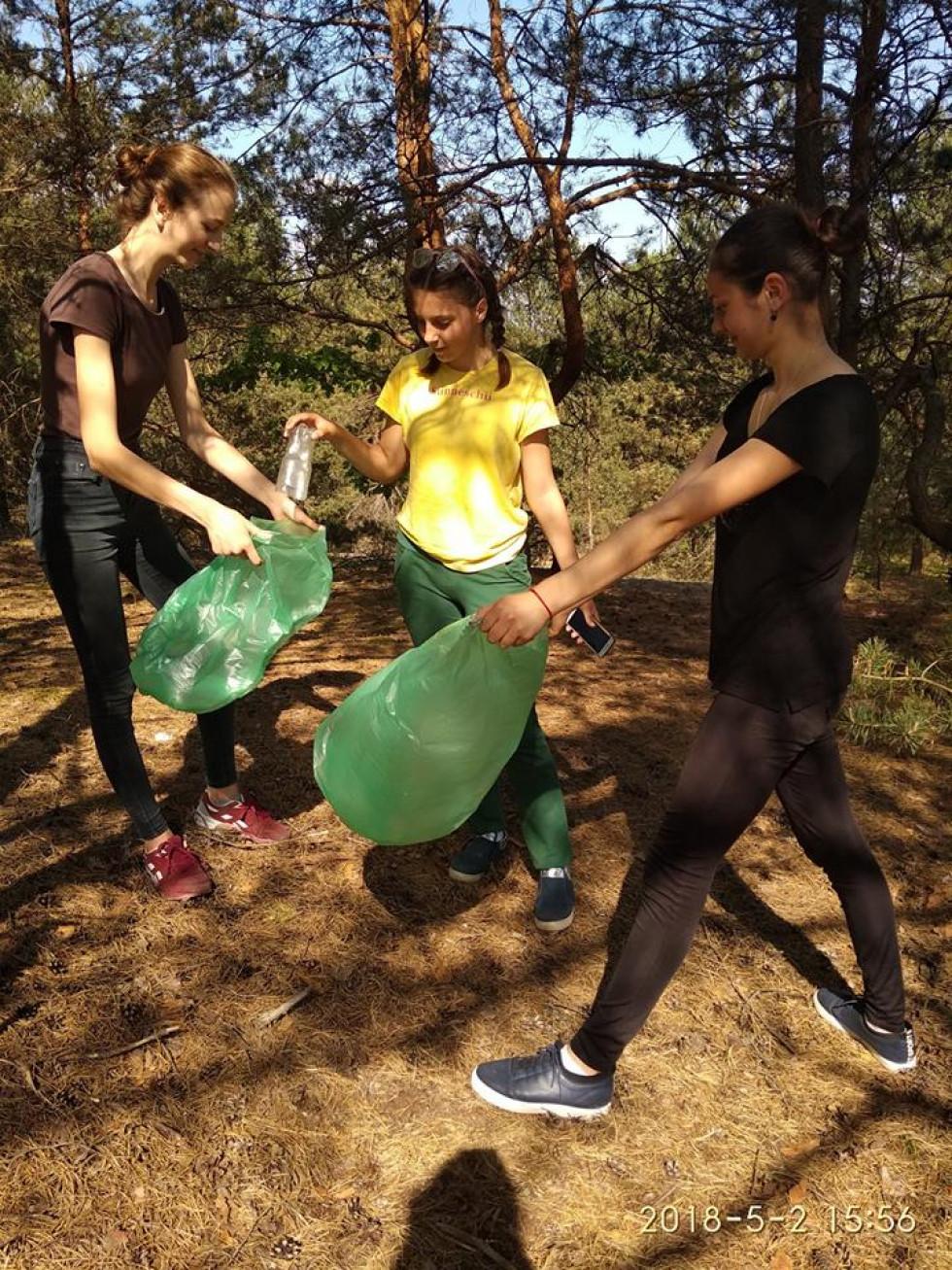 Прибирання лісу