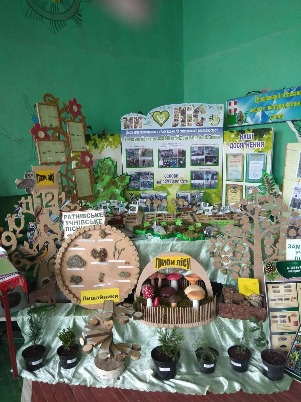 Виставка робіт шкільних лісництв Ратнівщини