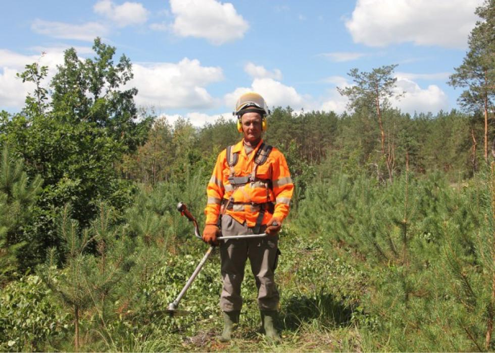 Пацівник ратнівського лісового господарства