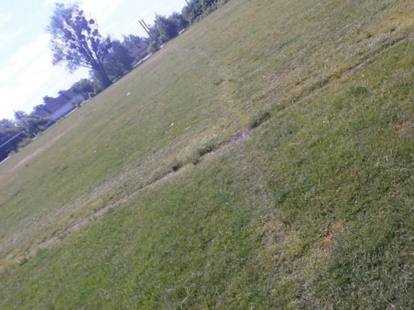 Заболотівське футбольне поле