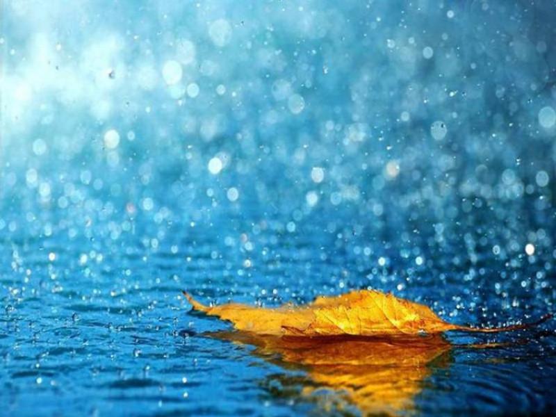 У Ратному очікується дощ