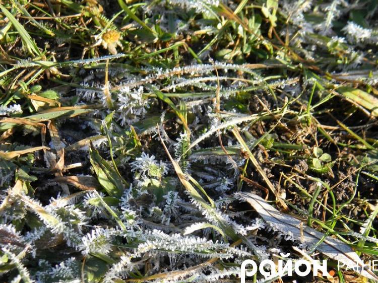 Синоптики попереджають про сильні заморозки