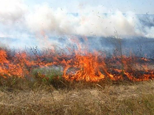 На Ратнівщині горіла суха трава