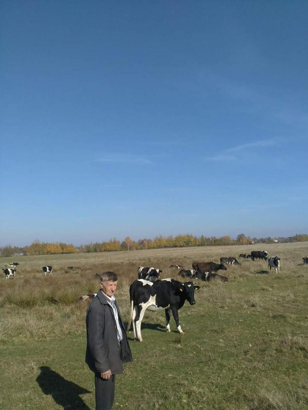 Перевірка тваринництва до зимового періоду