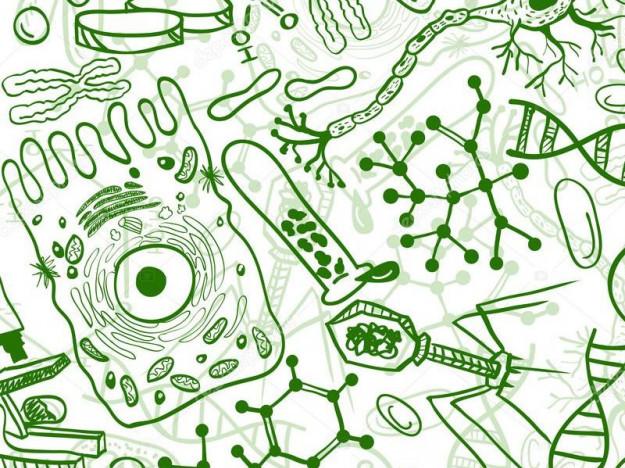 У Ратному педагоги-біологи вдосконалювали професійні навички