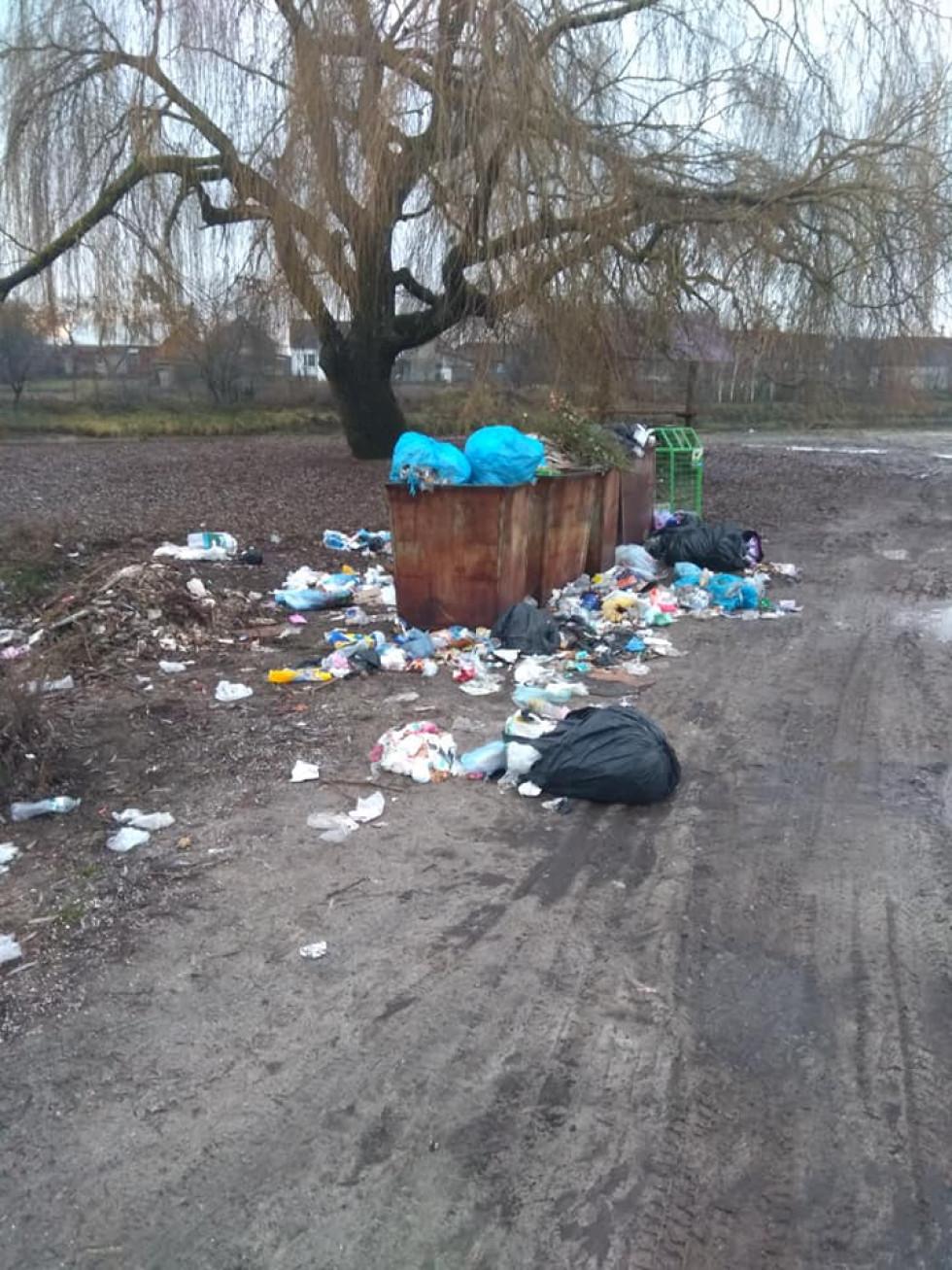 Тьма сміття, яке вчасно не прибирають