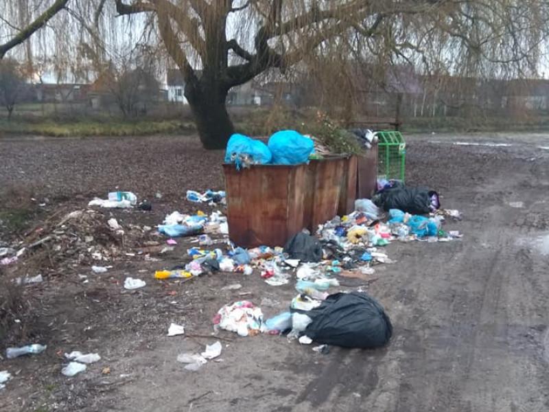 На березі річки Прип'ять тьма сміття, яке вчасно не прибирають.