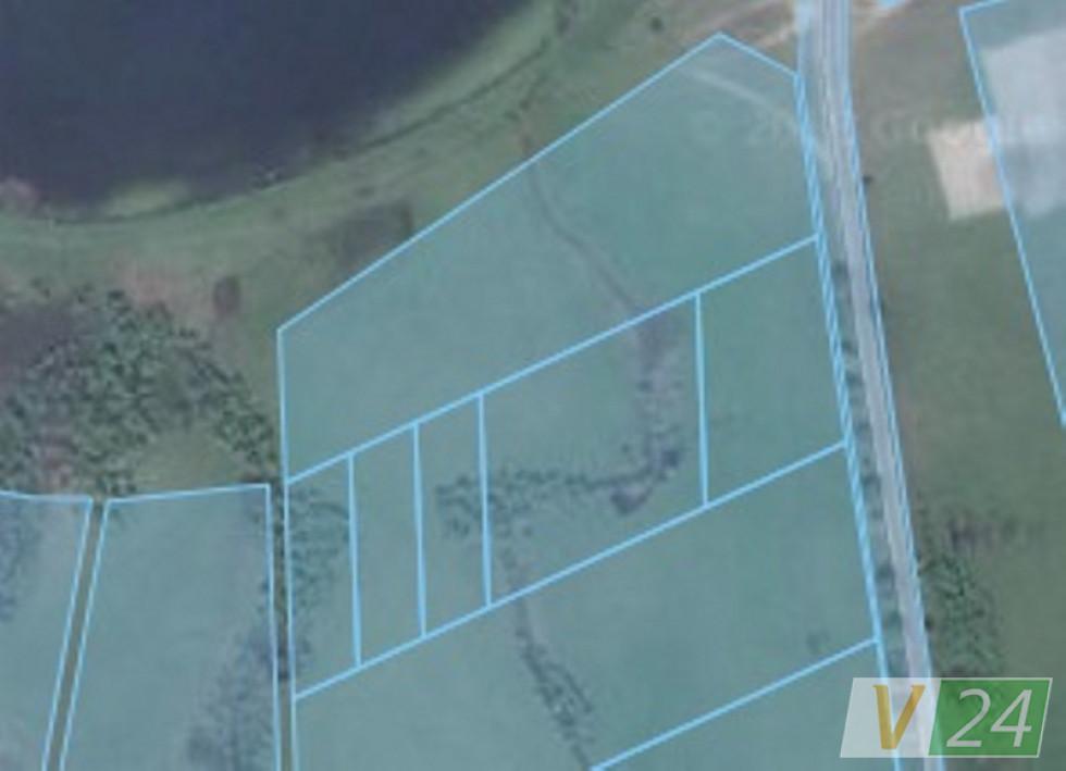 Земельна ділянка Михайла Маковецького, яка поділена для подальшої реалізації